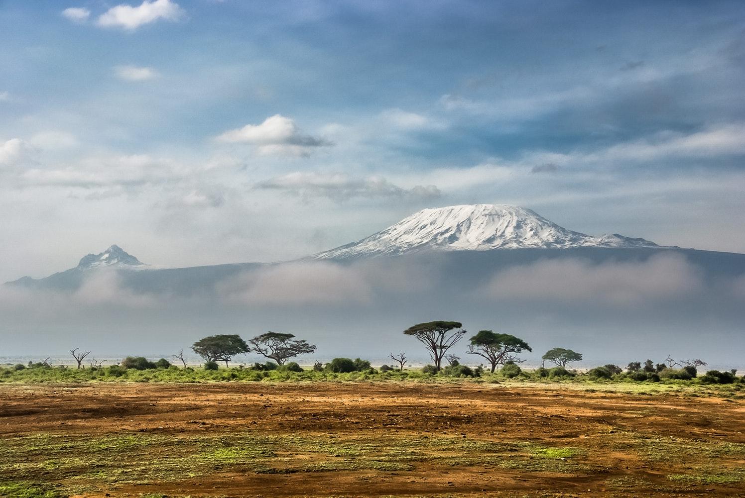kilimanjaro safari image