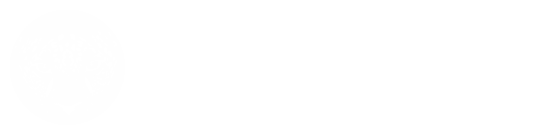 Golden Sky Safaris